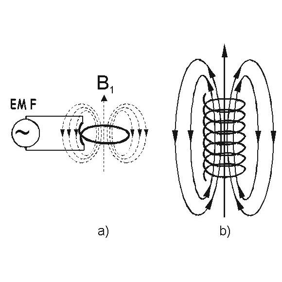 Single loop driven by a source of Electromotive Force (a) and solenoid b) as a source of linearly polarized field B   1  .