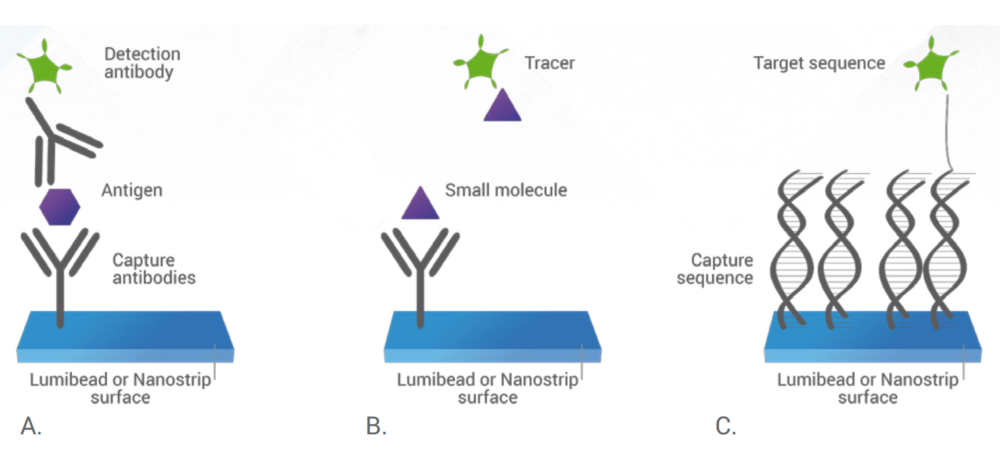 A wide variety of assay formats are possible including: (A) sandwich immunoassay, (B) competitive immunoassay, and (C) nucleic acid detection. Other assay formats are possible as well.