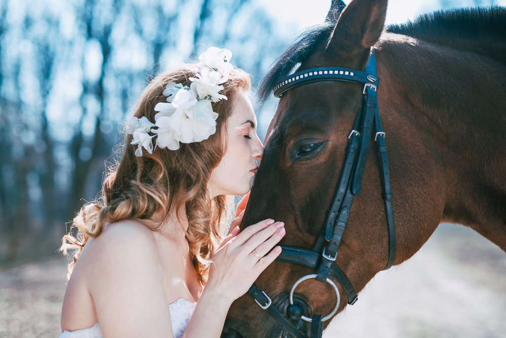 Metamorphoses | A wedding inspiration shooting with a horse at Austrian imperial court Spanish Riding School at Hofburg Palace Vienna Austria, by elopement, proposal and destination wedding planner