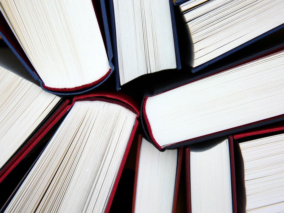 books-462579_960_720.jpg