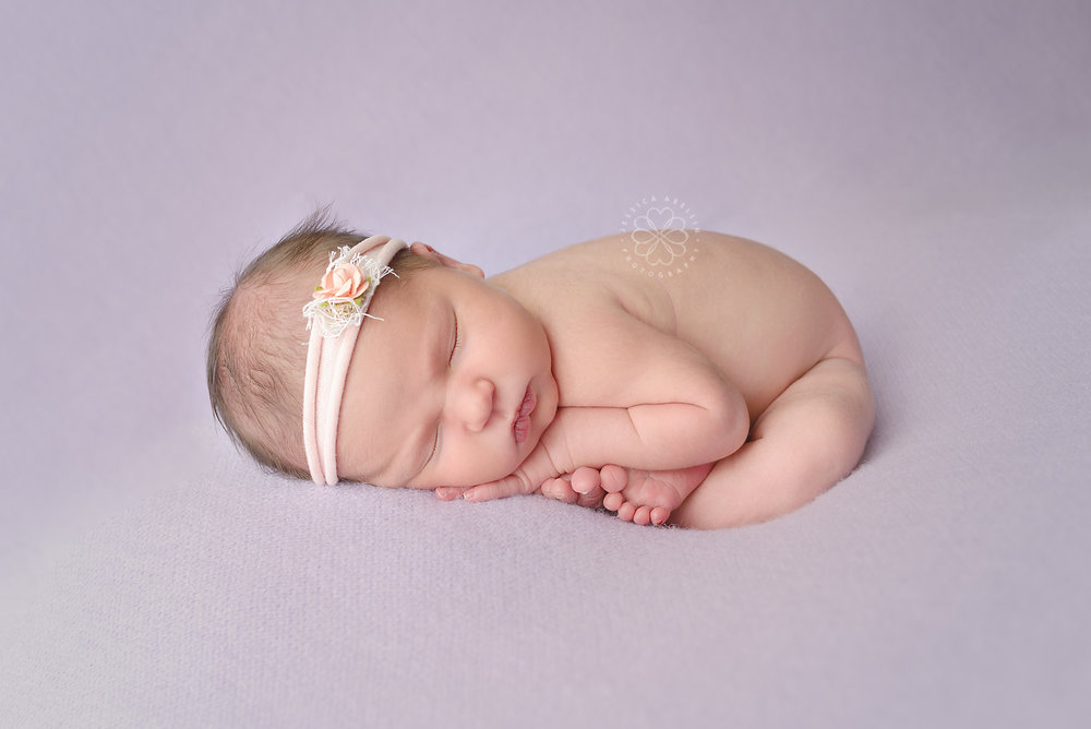 Colorado Newborn Photography Purple