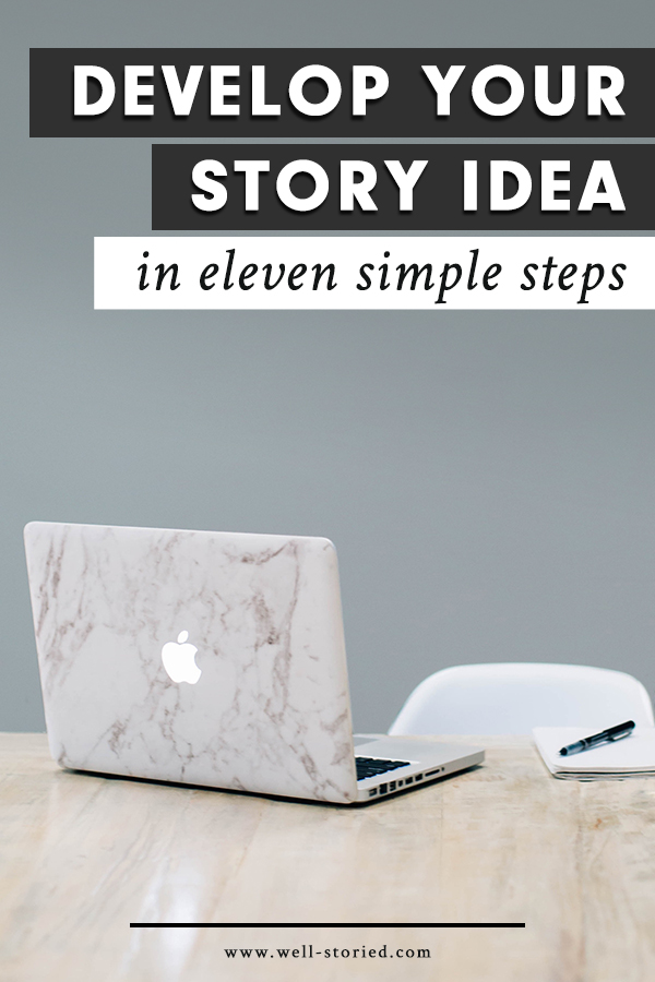 11 Steps to Turn Your Plot Bunny into a  Full-Fledged Novel via ShesNovel.com