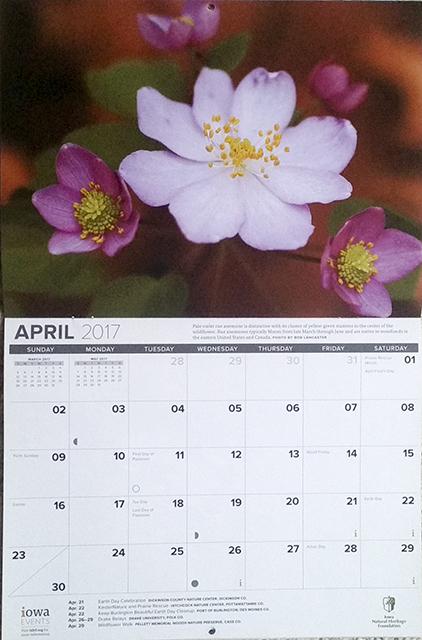 INHF April 2017 calendar.jpg