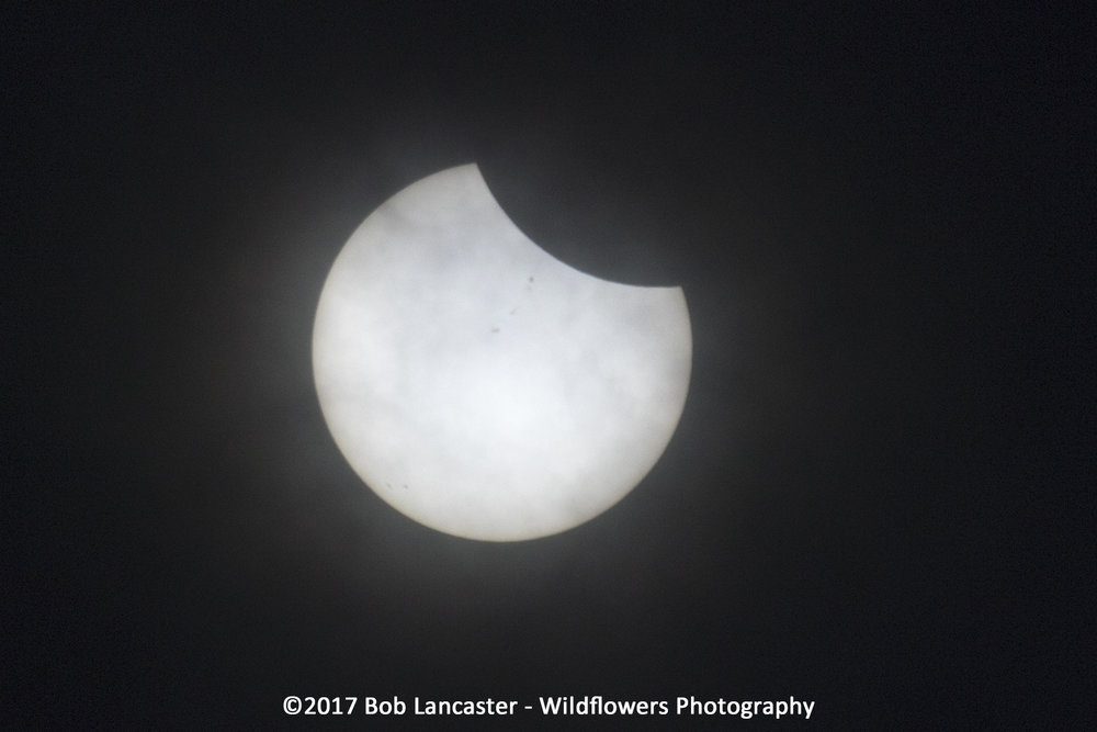 2017Solar Eclipse from StJosephMO_MG_1824.jpg