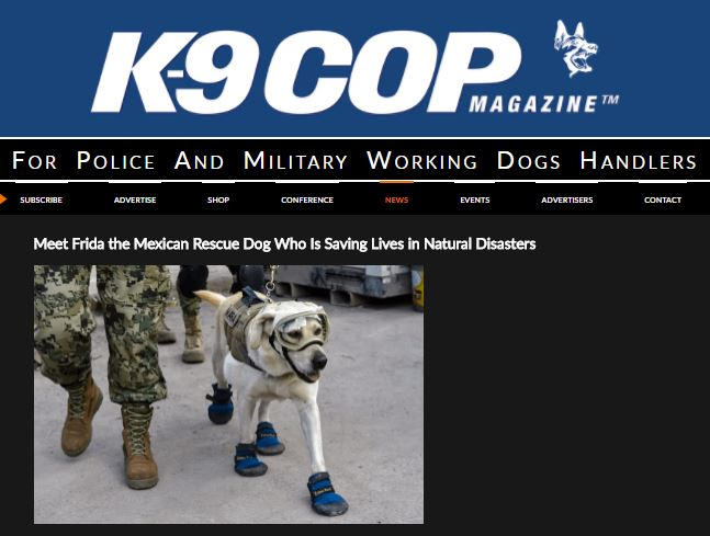 Read  this K9 Cop Magazine article about Mexican Navy K9 Frida and see Rex Specs in action.