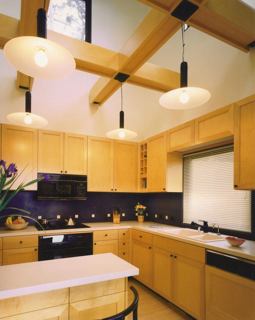 Kaplan-Architects-new-modern-hillside-house-kitchen-2.jpg