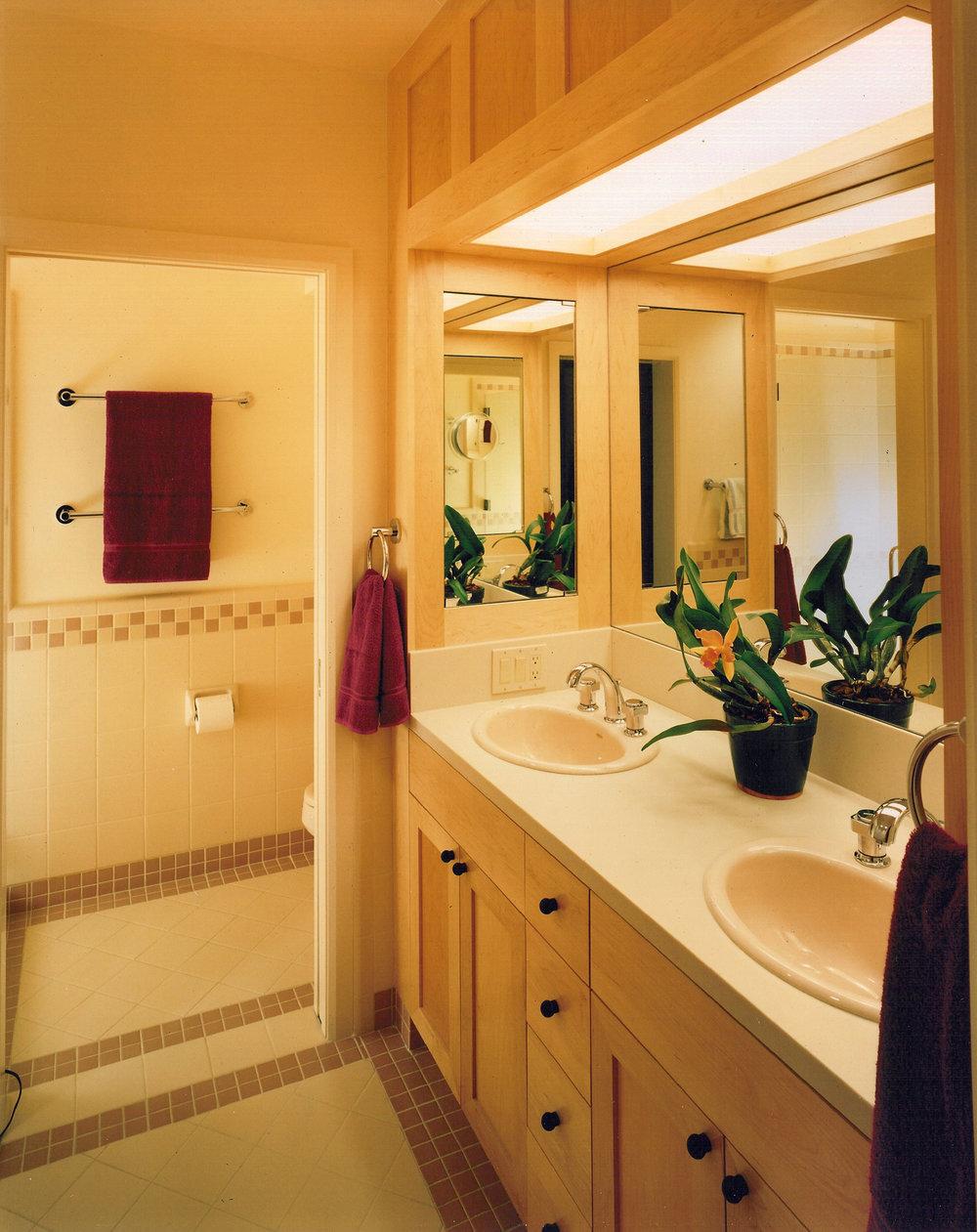 Kaplan-Architects-new-modern-hillside-house-bathroom.jpg
