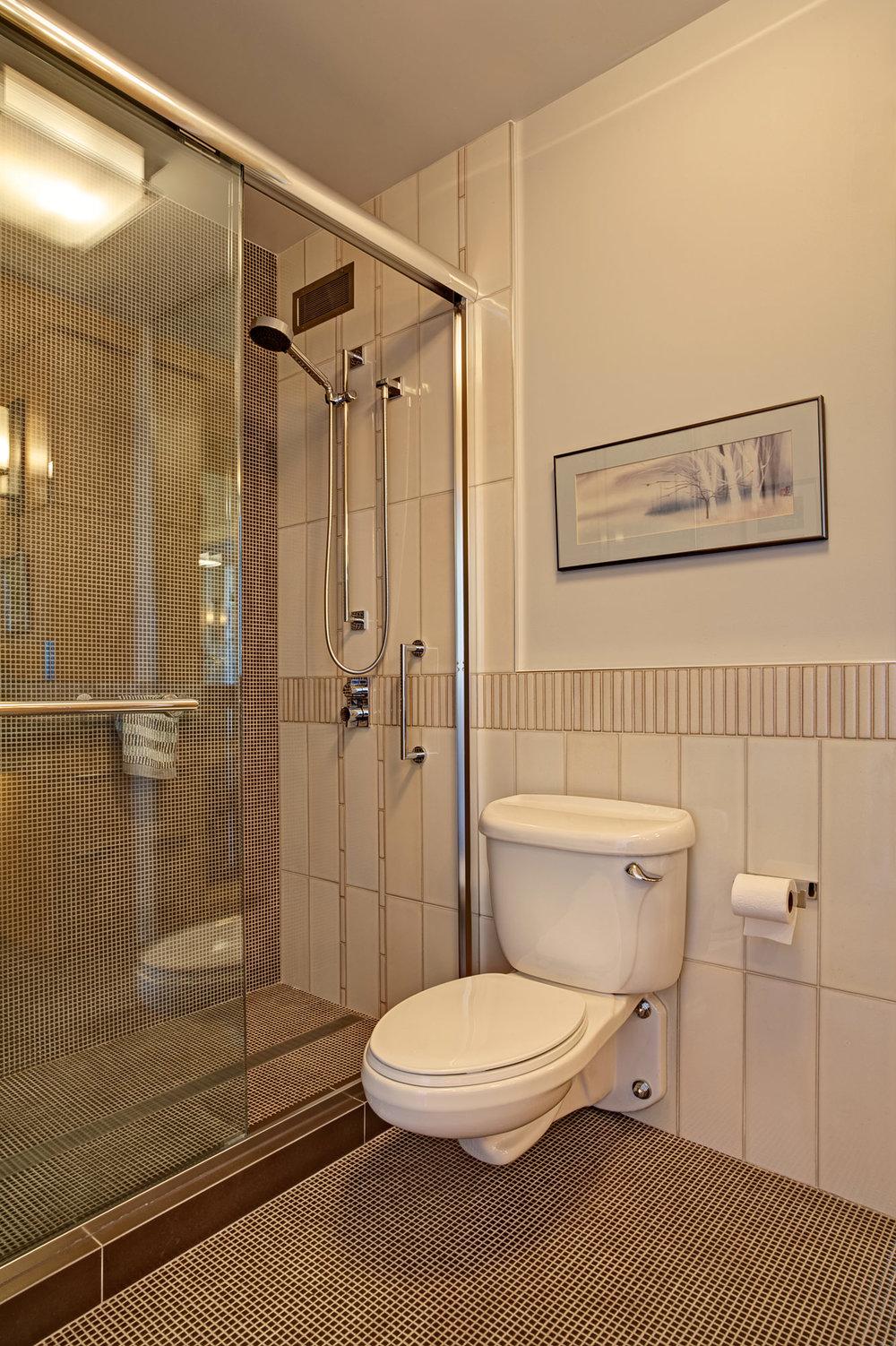 Kaplan-Architects-high-rise-interior-guest-bathroom-toilet-shower.jpg