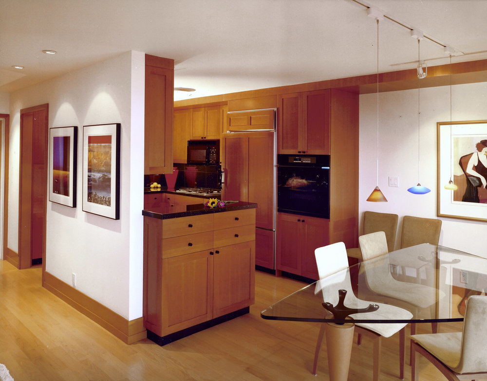 Kaplan-Architects-San Francisco-remodel-kitchen-view.jpg