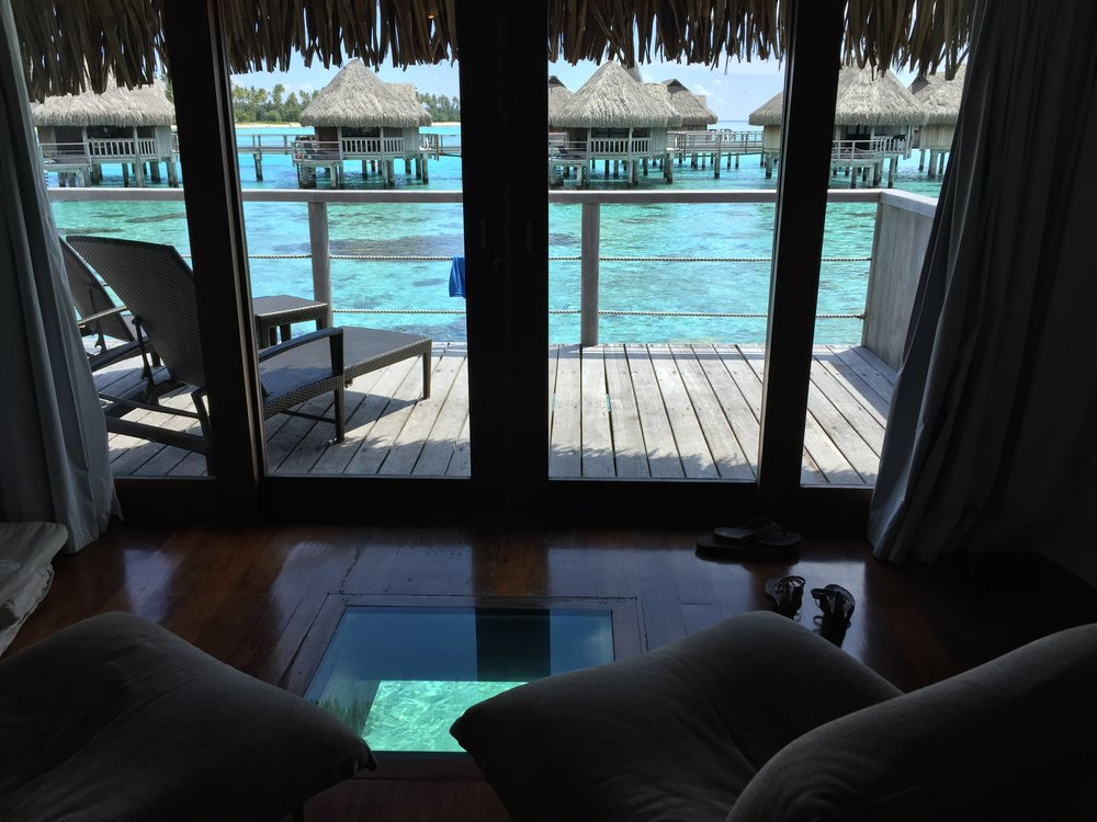 Overwater bungalow views in Moorea - Wandering Jokas Travel Blog
