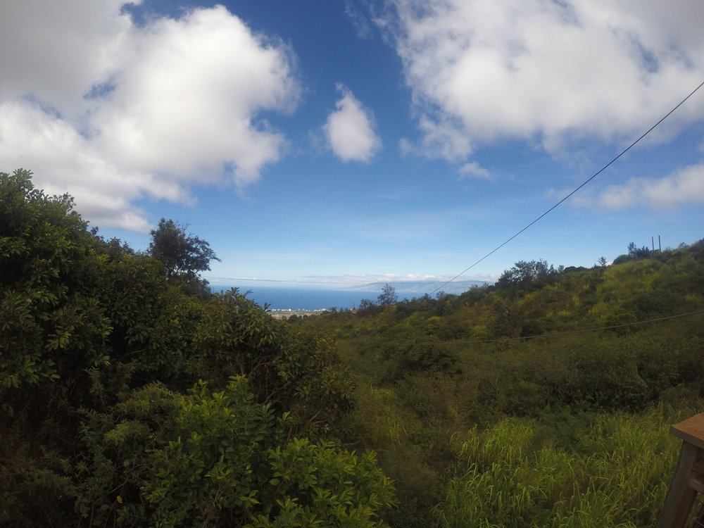 Maui Zip line views