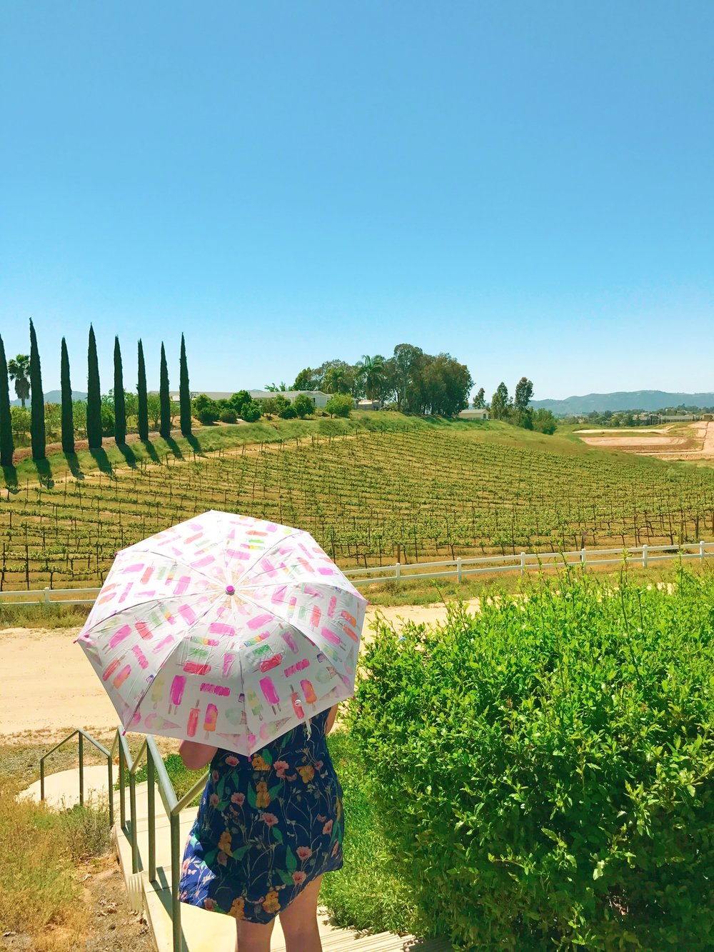 Vines and Kate Spade ice cream umbrellas