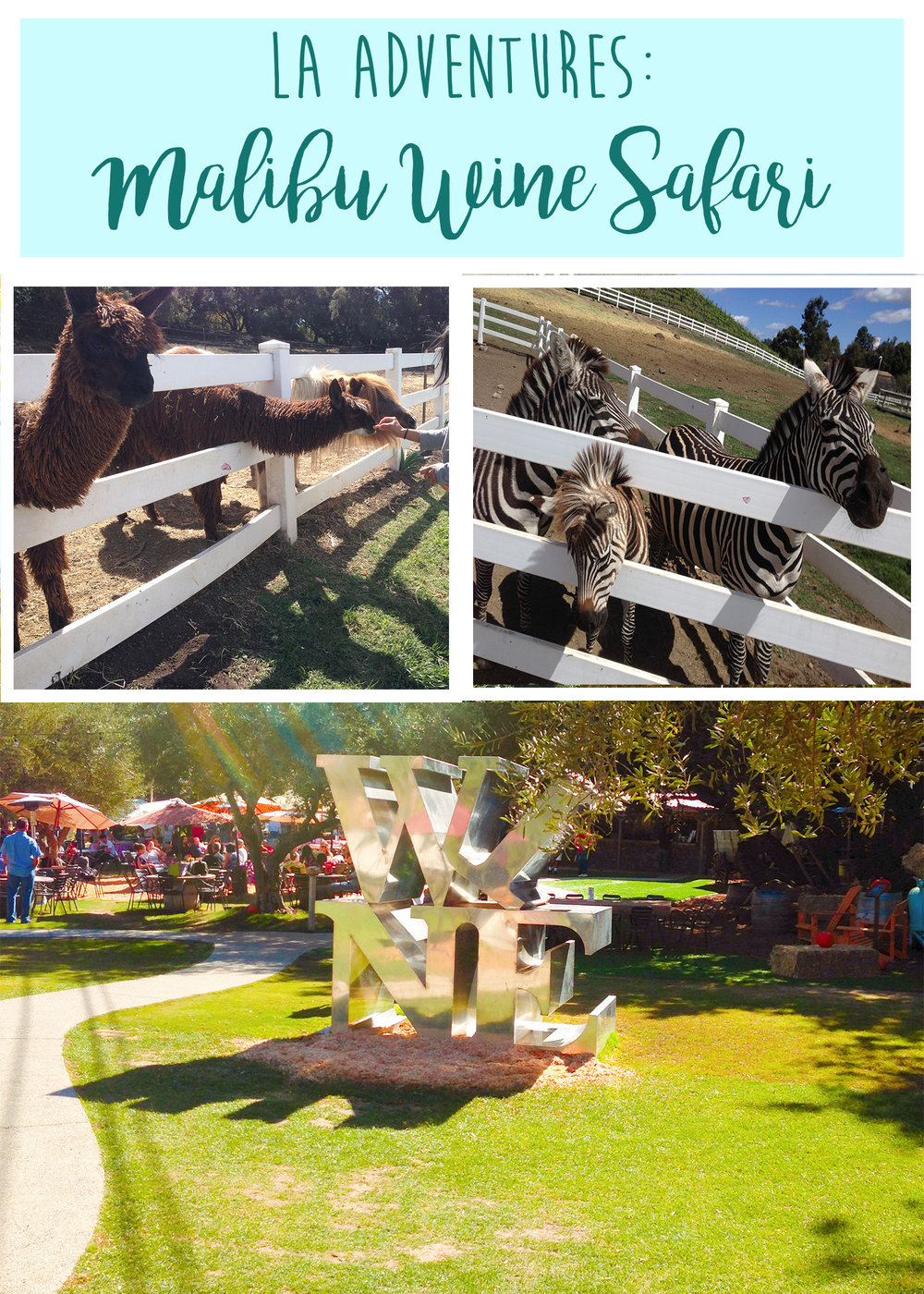 Malibu Wine Safari - Wandering Jokas Travel Blog