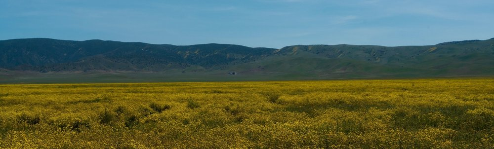 Carrizo Plain - Wandering Jokas Travel Blog