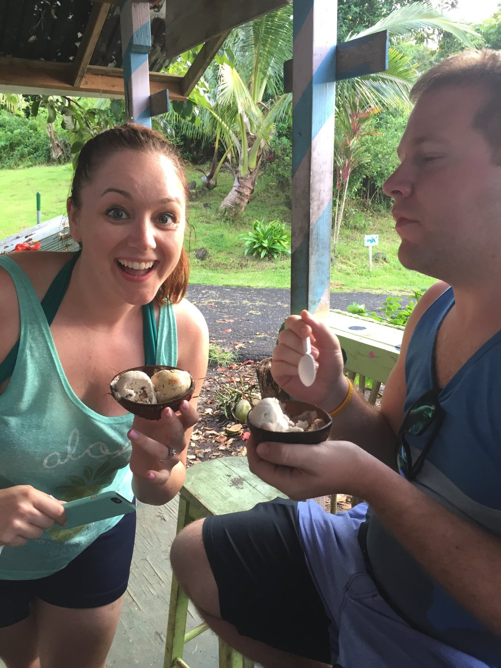 YUM! Coconut Glen's Ice Cream - Wandering jokas Travel and Ice Cream Blog