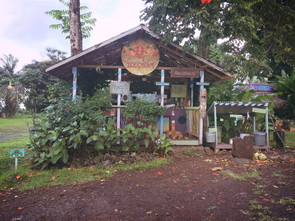 Coconut Glen's Ice Cream Maui - Wandering Jokas Ice Cream Blog