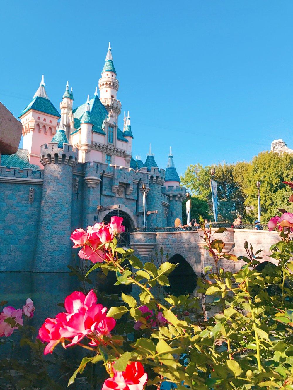 Disneyland - Wandering Jokas Travel & Ice Cream Blog