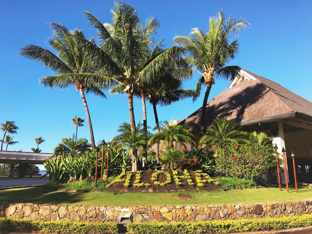 Aloha from Sheraton Maui