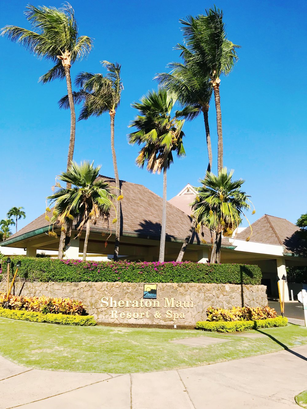 Welcome to the Sheraton Maui Resort