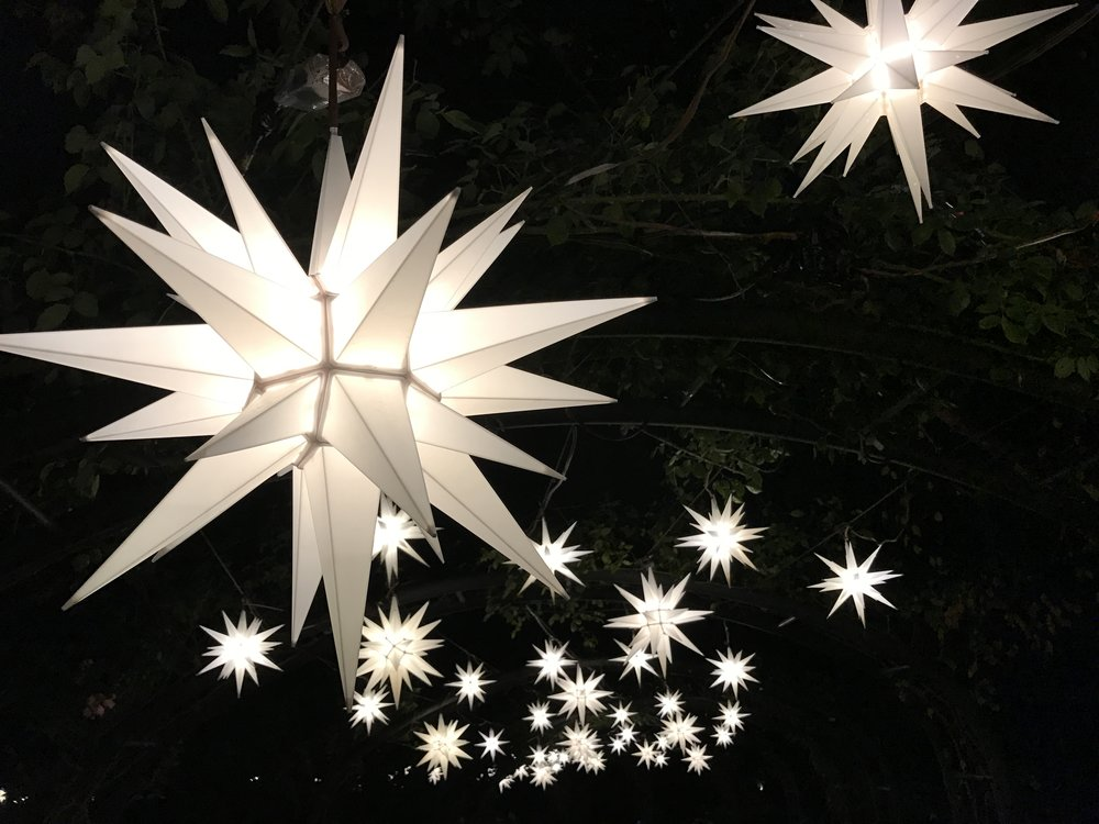 Christmas in Descanso Gardens
