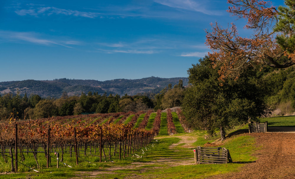 Best Wineries in Sonoma County - Gundlach Bunschu Winery