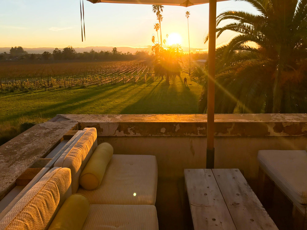 Copy of Scribe Winery Sunset views - Best Winery in Sonoma County