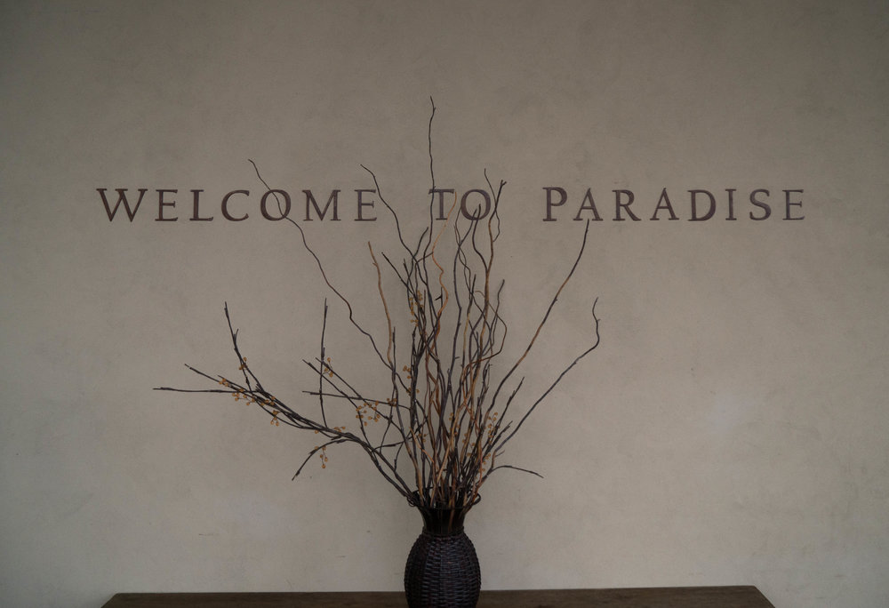 Best Wineries in Sonoma - Welcome to Paradise