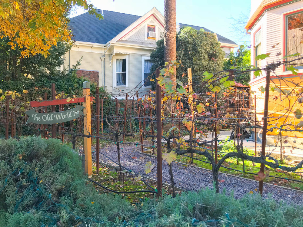 Cabernet House, Old World Inn, Napa Hotel - Front Yard