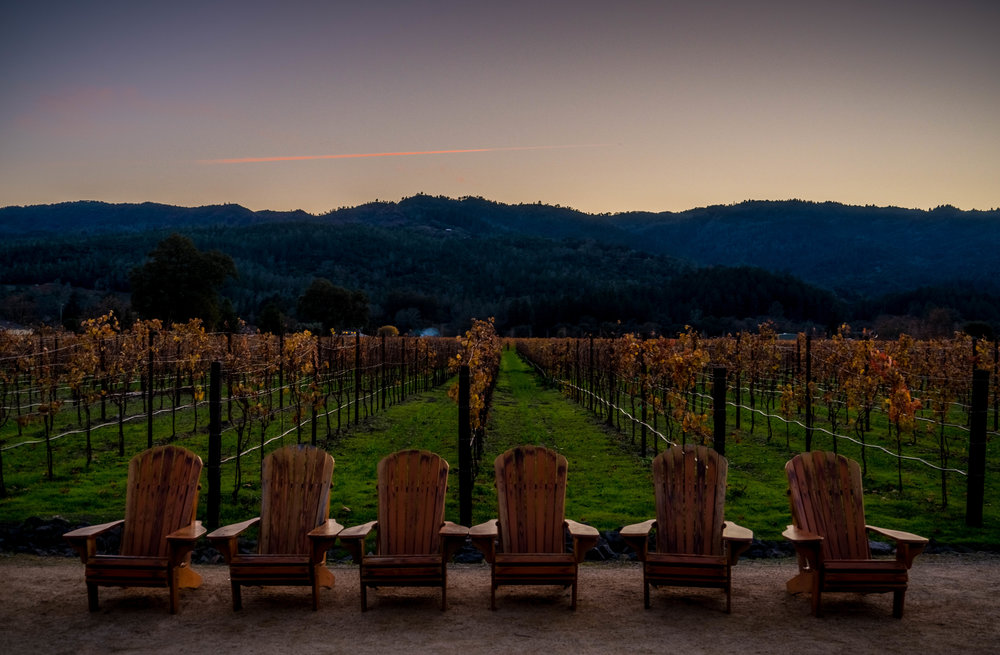 Best Wineries in Napa - Hall Winery