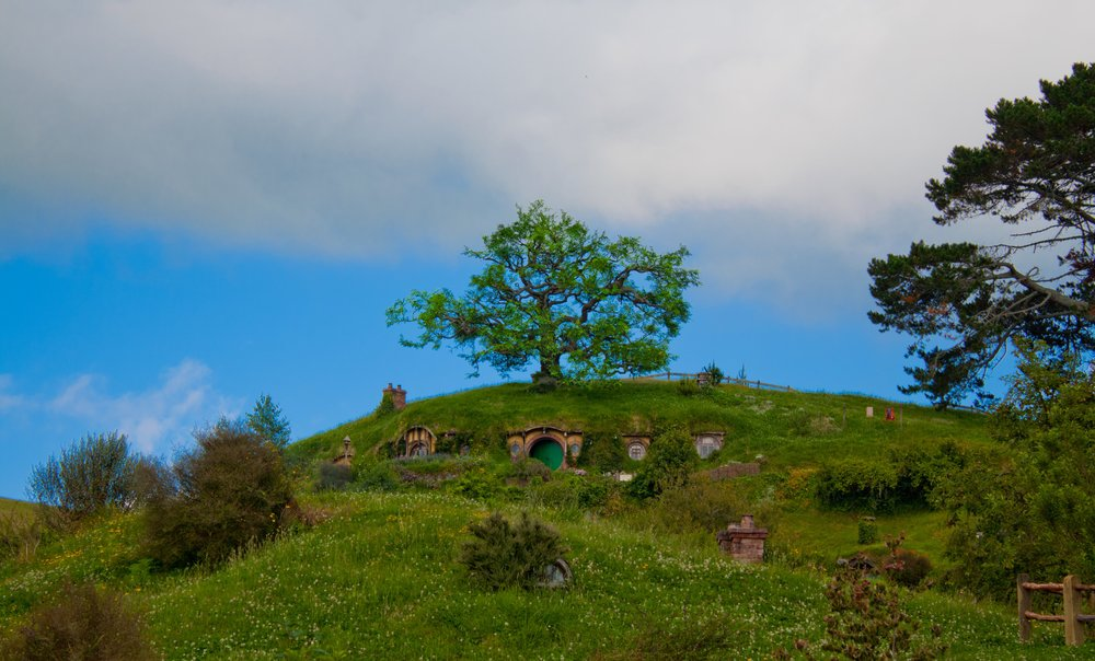 Hobbiton Movie Set Tree on Hill New Zealand