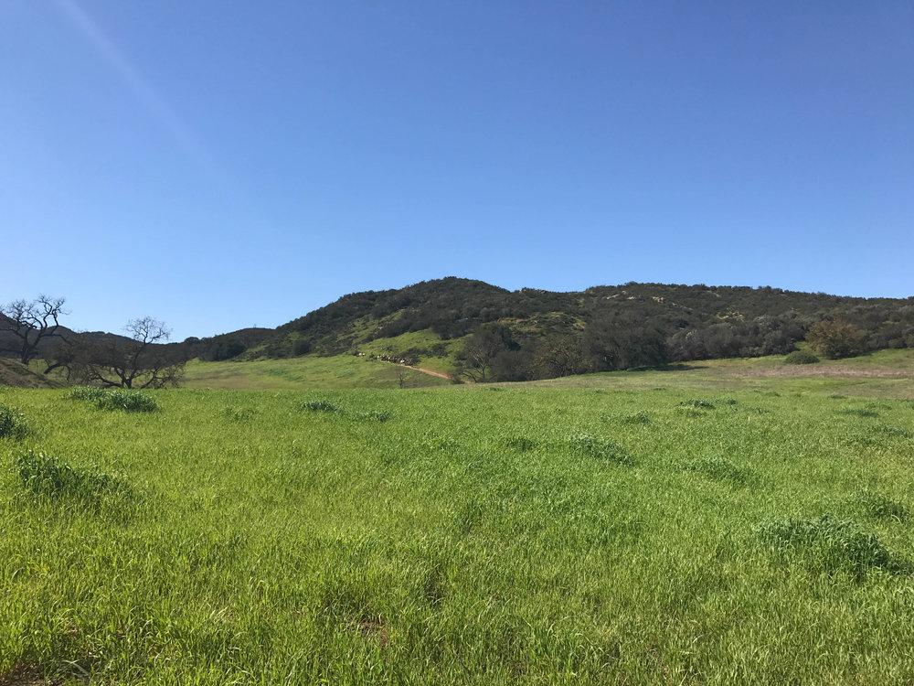 Paramount Ranch Set Hiking Trail Horses