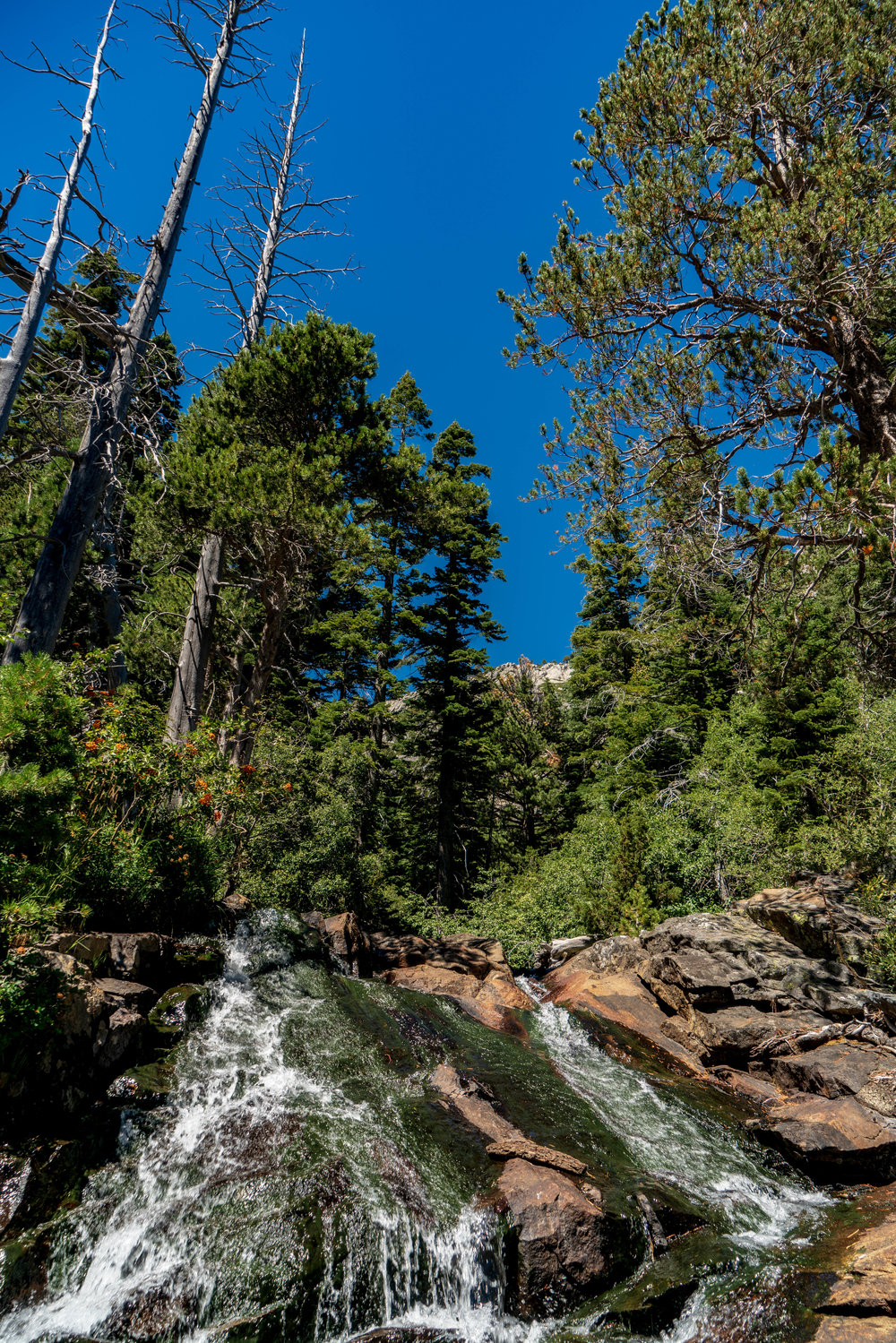 Tahoe Eagle Falls - Hiking Trail 2018