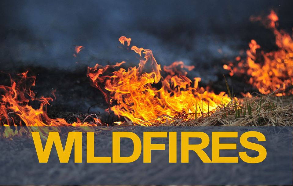 Current Wildfire Information
