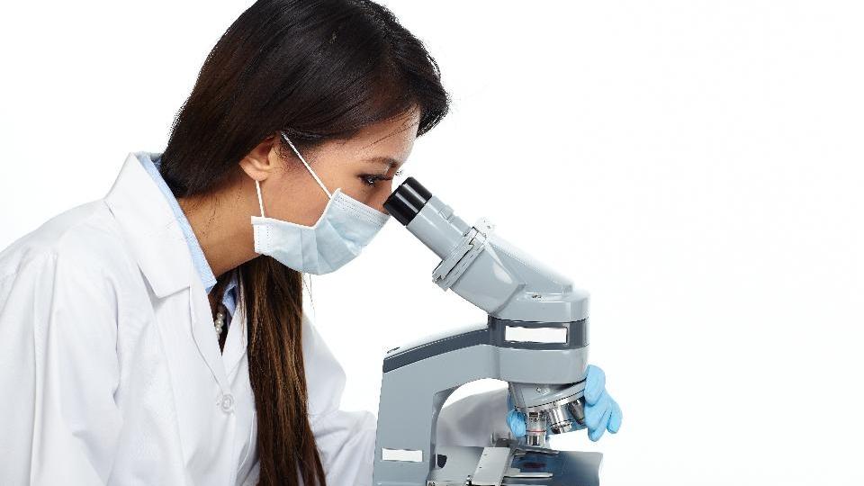 Forbes Magazine Jane Zelikova Kelly Ramirez 500 women scientists press diversity