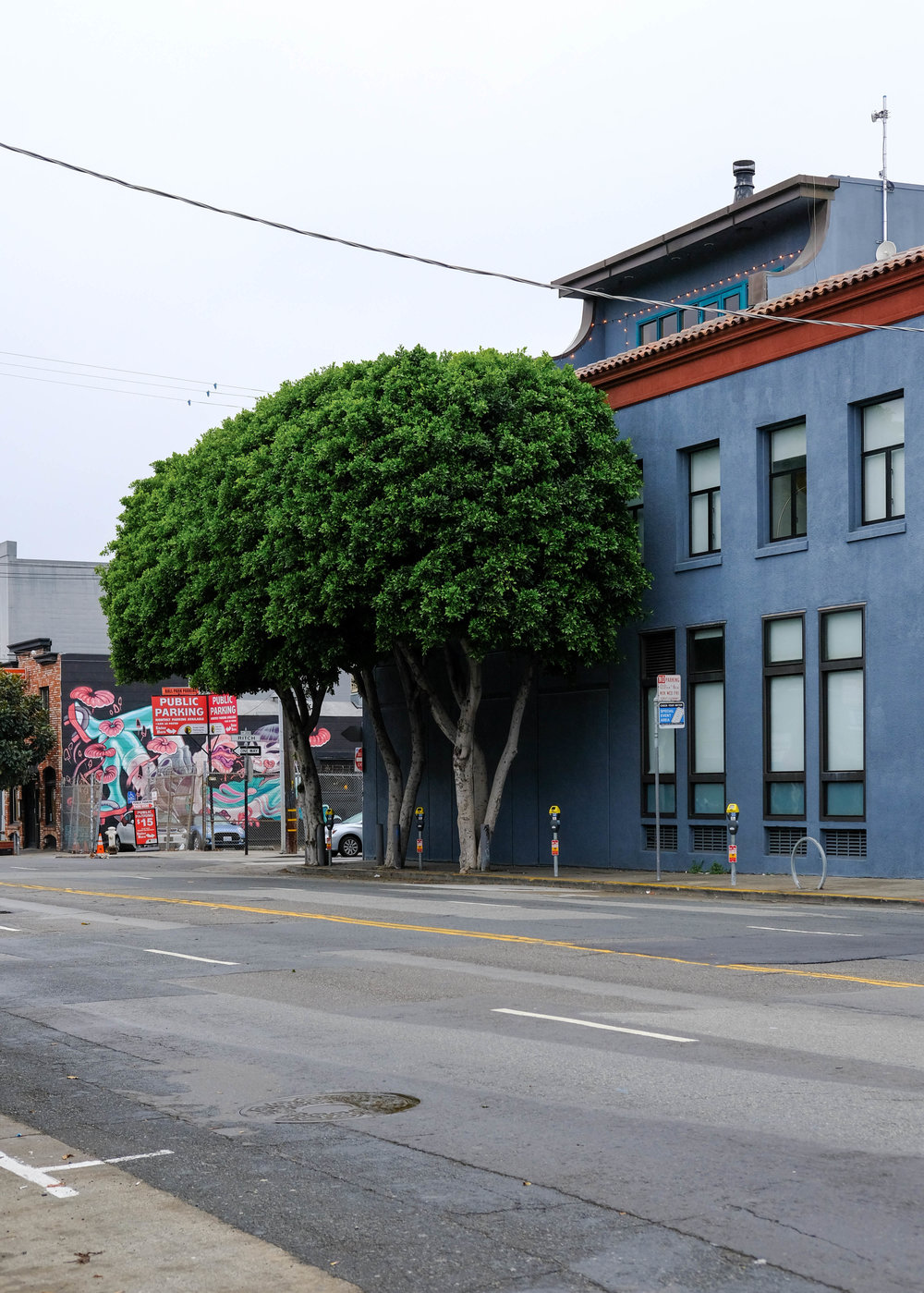 "<p style=""font-family:brandon-grotesque;font-weight:500; font-size:11px; text-center:left; color:light grey;letter-spacing: 1px"">SEPTEMBER 30, 2017 • 🌳 • 📍 San Francisco, CA</p>"