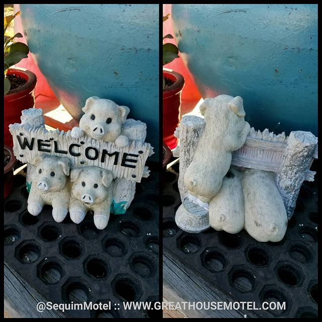 Whether you are coming or going, we want your stay at #GreatHouseMotel to feel like home. #welcome #travel #motel #Sequim WWW.GREATHOUSEMOTEL.COM