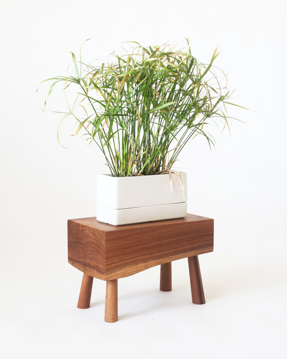 Small stool-  Red elm