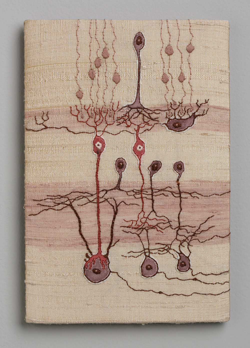 No.6 Retinal Neurons