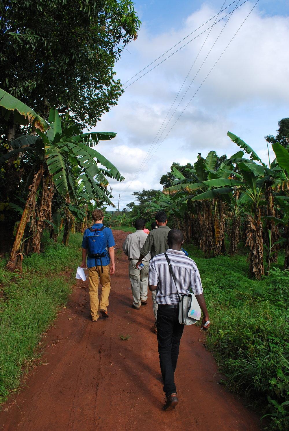 Walking through peri-urban Nakaseke to recruit research participants.