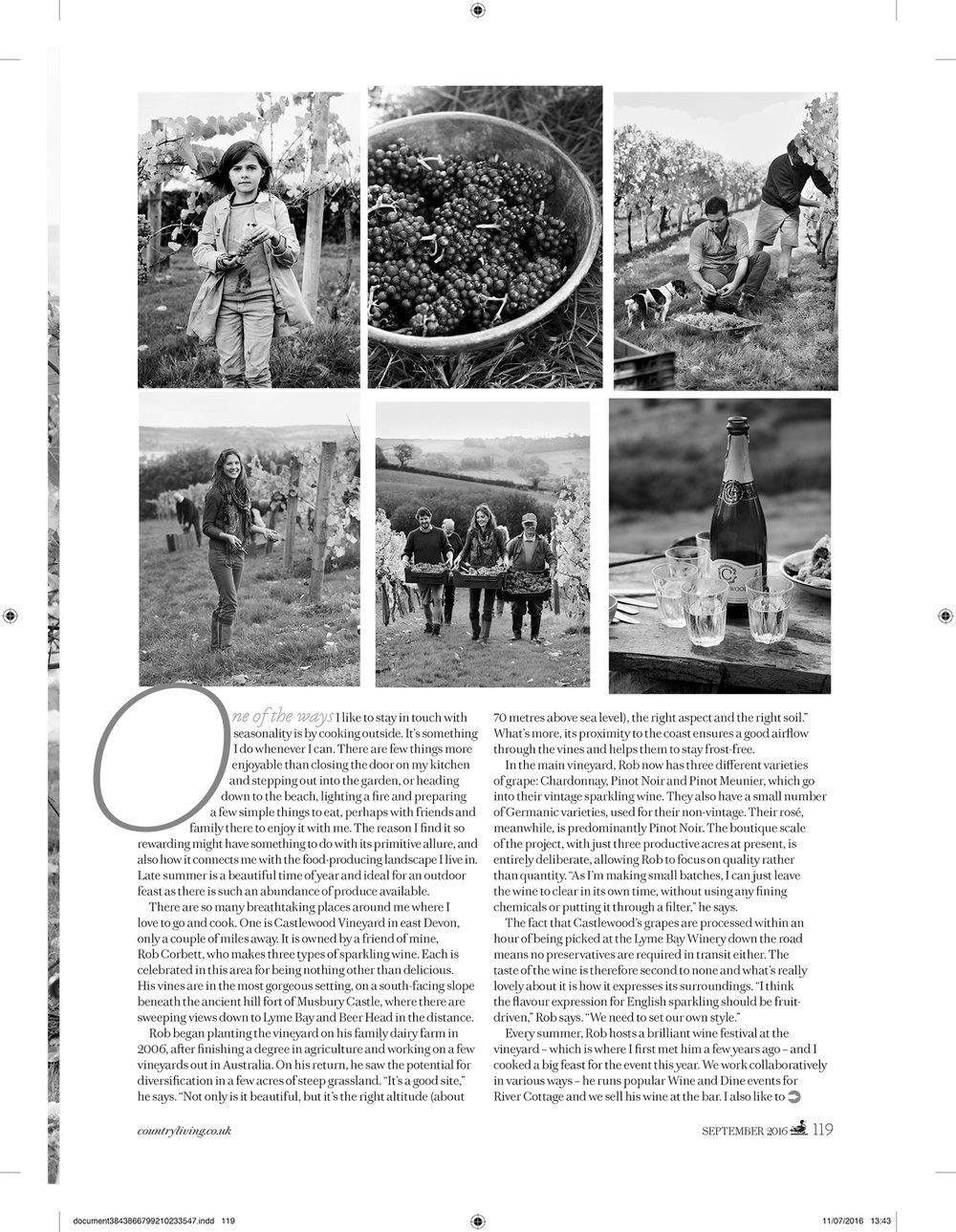Gill Meller_ harvest_pdf_4.jpg