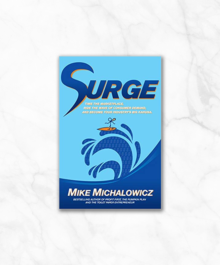 surge by mike michalowicz.jpg