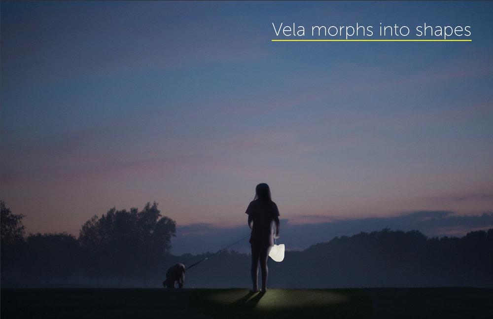 Vela_Morphs2.jpg