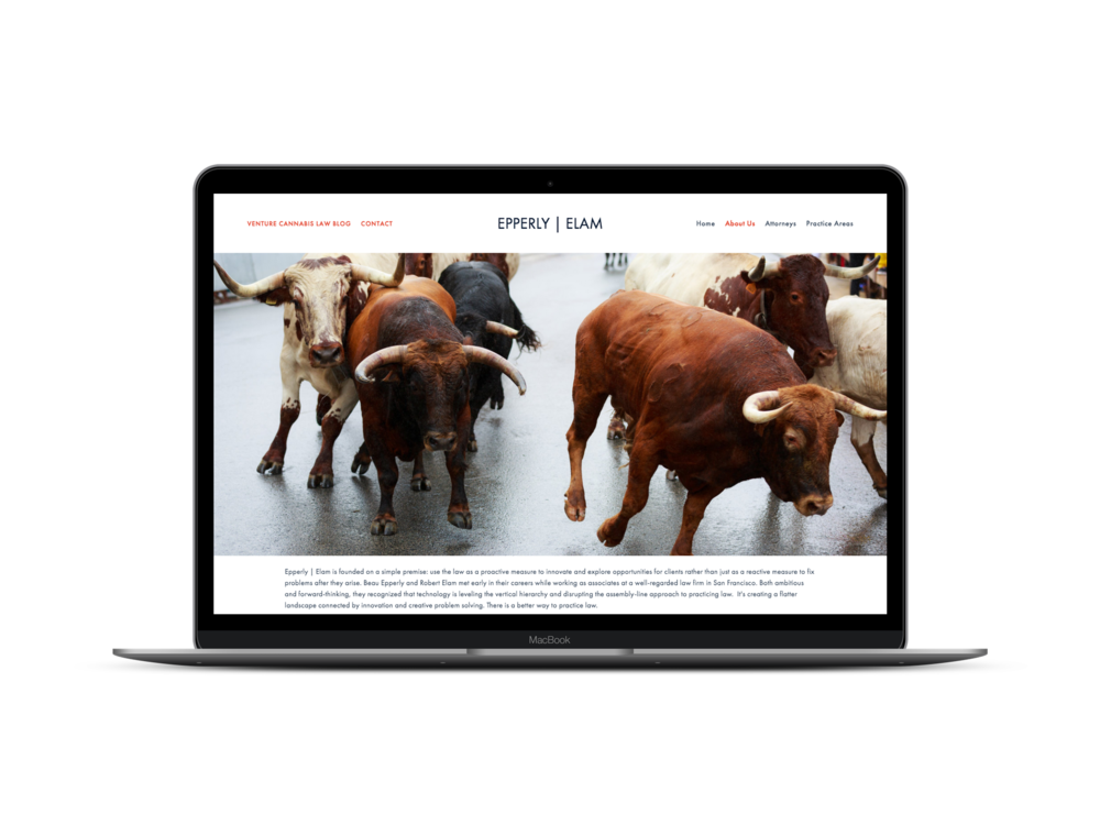 Max Pete provided Squarespace website design, development, brand strategy, and content creation for Epperly | Elam.