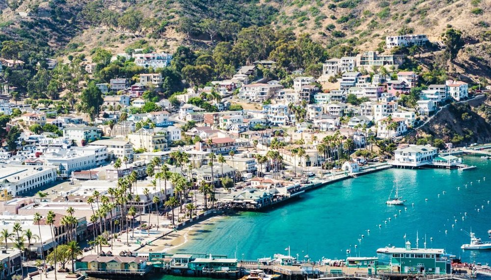 Catalina Island - Yes, I am a Southern California native that has never been to Catalina.  While I'm not so much into hiking the little shops and pier look very intriguing to me.  I definitely see a staycation in my near future.