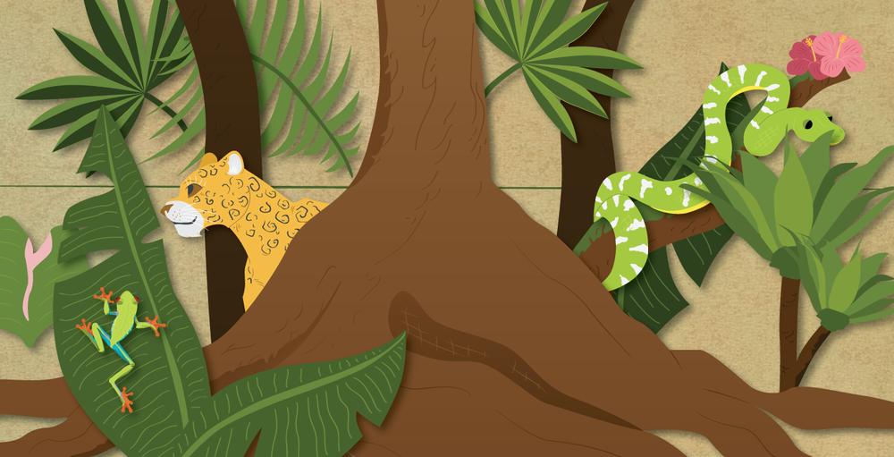 Sanders_illustration_leopard.png