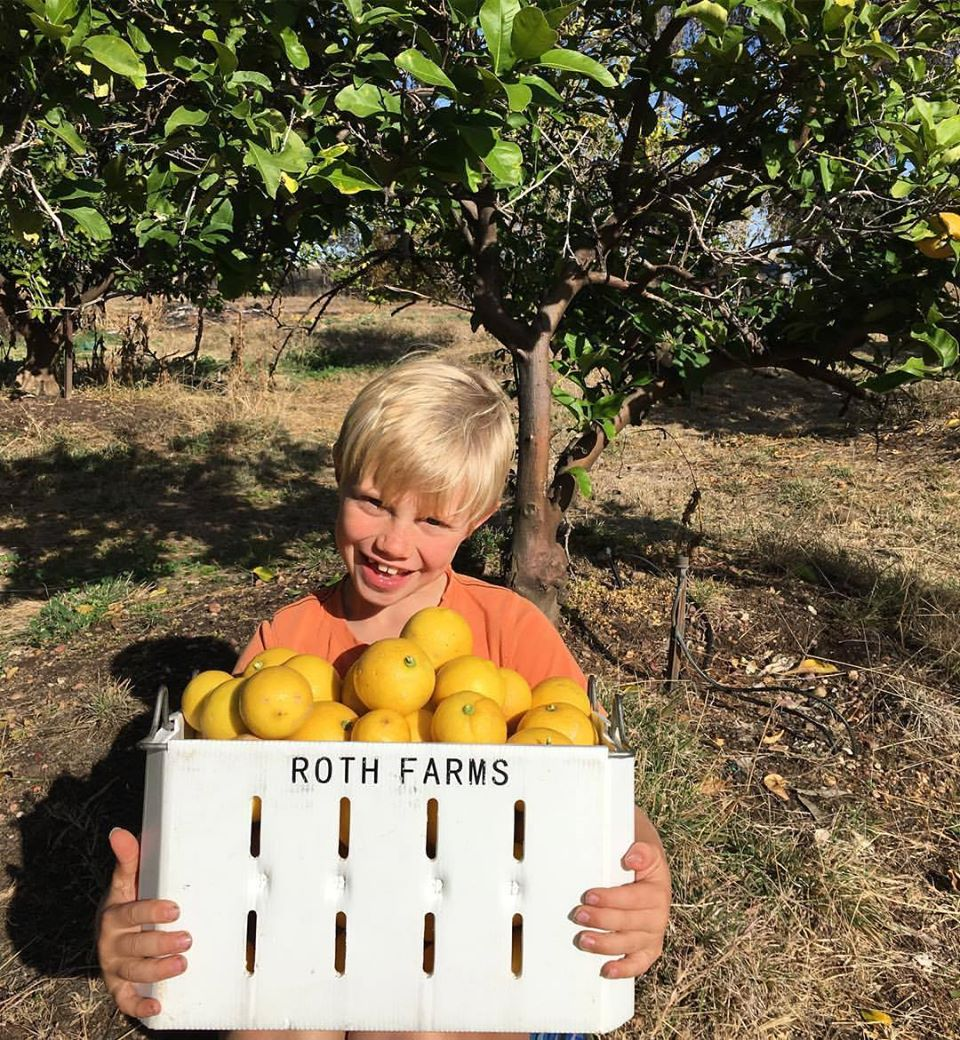 Roth Family Orchard