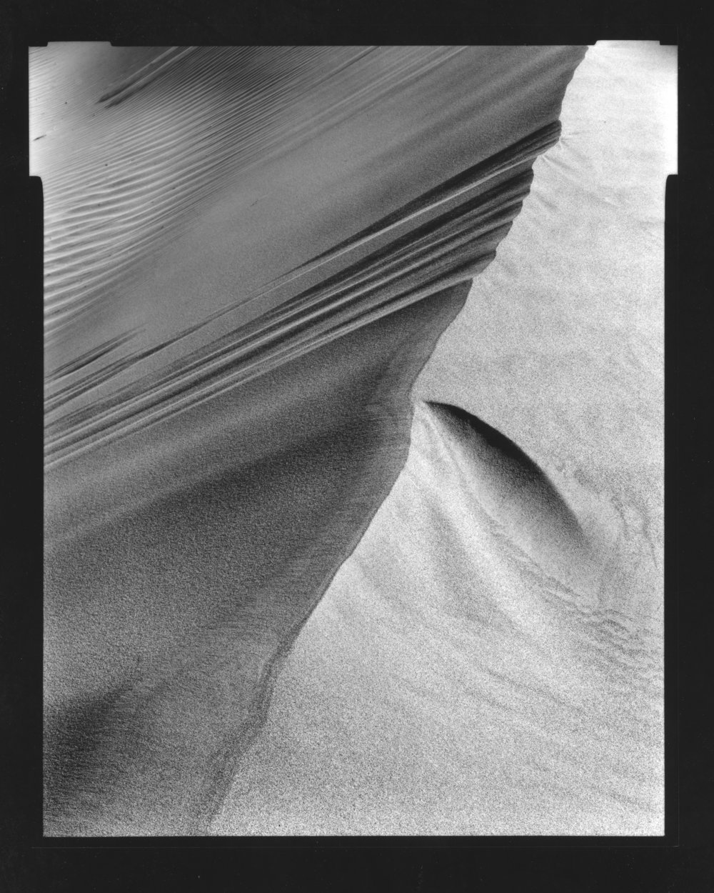 4x5 Contact Print. Dune, Death Valley