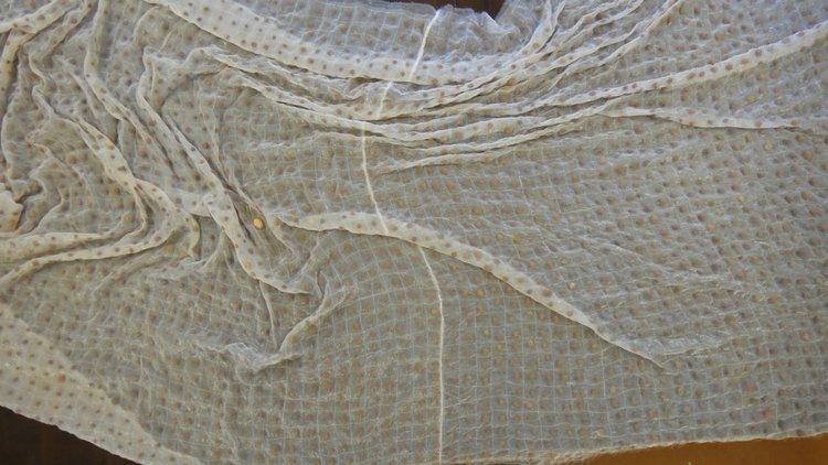 Blanket.jpg