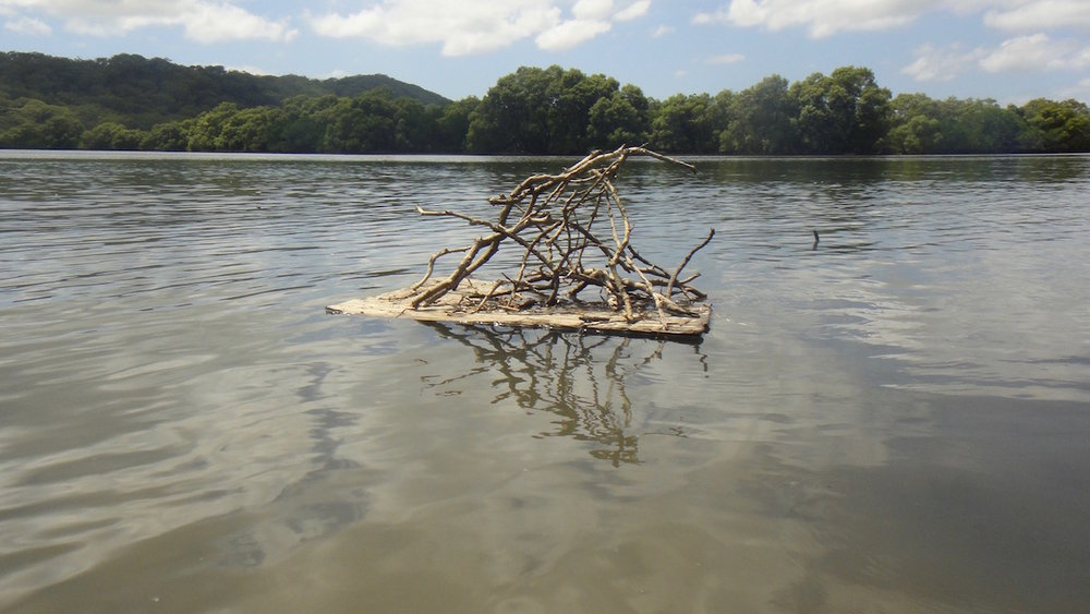 South East Littoral, Canaipa Island (facing Minjerriba): Found plywood and mangrove stick raft. January 2018