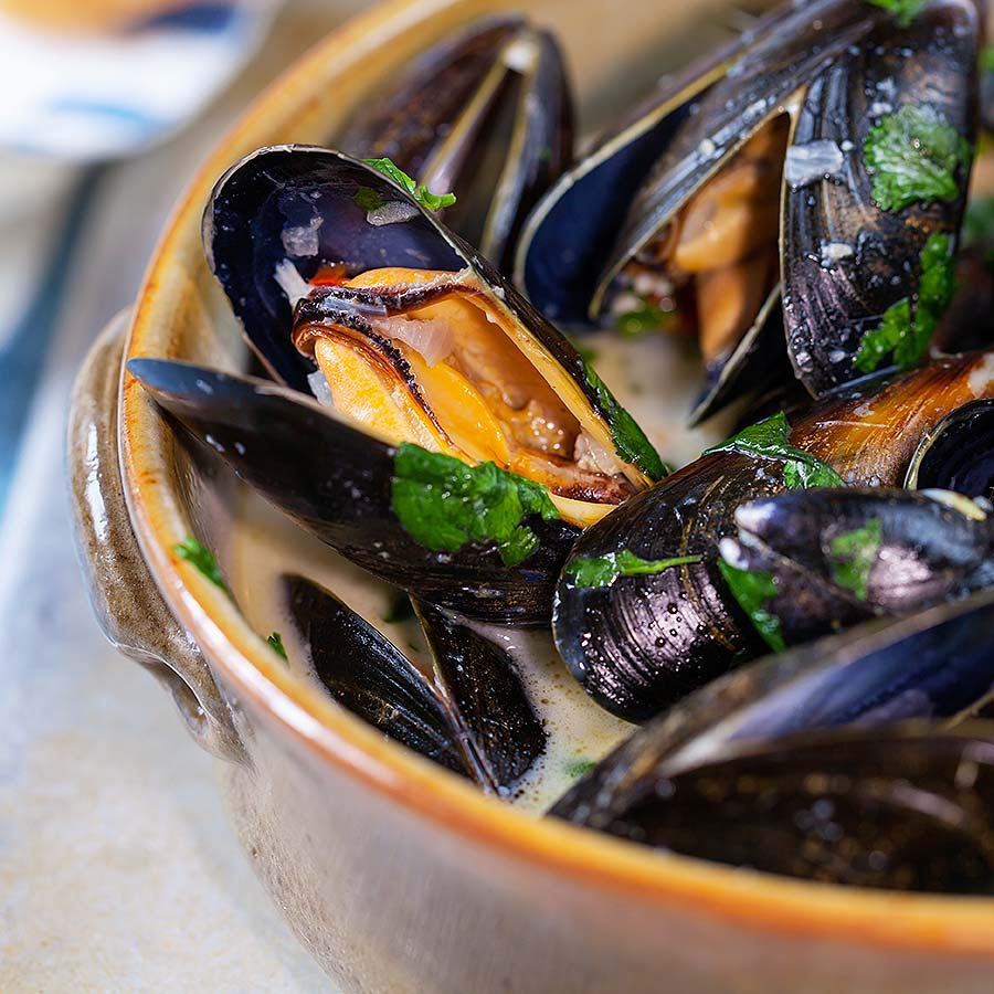 the love mussel